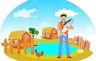 پرورش ماهی در خانه با طعم ثروت