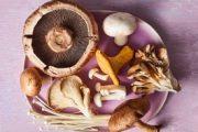 پیش به سوی پرورش قارچ به روش تولیدکنندگان برتر(درآمد میلیونی)